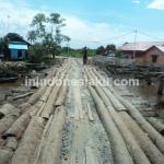 Desa Murung Raya, Inspirasi dari Barito Kuala