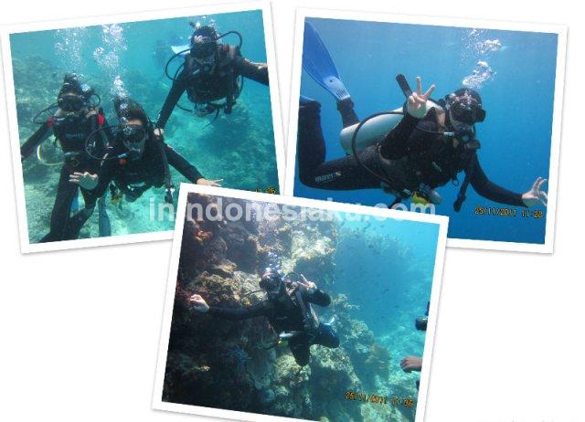 Wisata Manado, Laut Bunaken 1