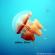 Pulau Kakaban, Pengalaman Berenang Bersama Ubur-Ubur Tanpa Sengat
