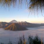 Wisata Bromo, Pesona Matahari Terbit dan Lautan Pasir (Part 1)