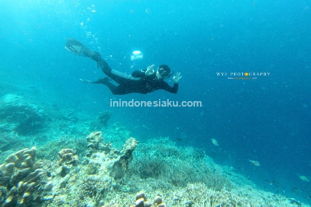 Pulau Sangalaki Derawan 2