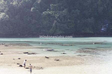 Pulau Sempu (Part 1) 4