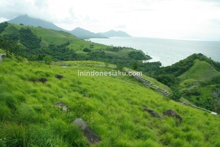 Bukit Cinta Lembata, Nusa Tenggara Timur 14