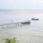 Wisata Bali Barat, Snorkeling Ceria di Pulau Menjangan