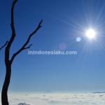 Gunung Papandayan, Sunrise sempurna di Atas Awan