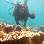 9 Things To Do in Tinabo Island (Takabonerate)