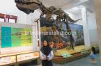 Museum Geologi Bandung 4
