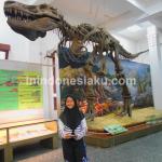 Wisata Edukasi, Menguak Sejarah Penciptaan Bumi di Museum Geologi Bandung