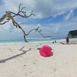 Wisata Sumba, Kejutan dari Pantai Tarimbang