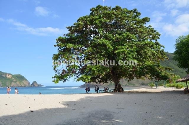 Pantai Mawun Lombok Tengah 3