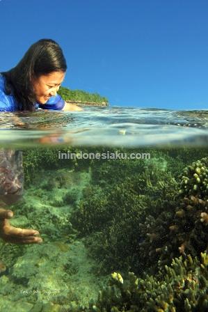Wakatobi, Sulawesi Tenggara 1