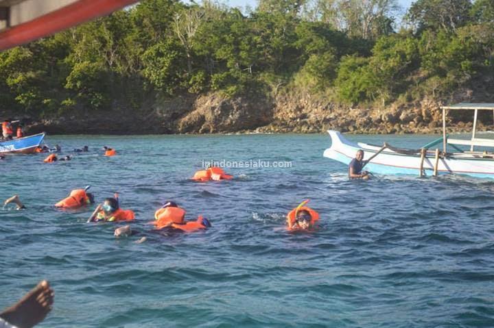 Pantai Pink Lombok 4