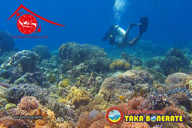 Trip Selayar, Takabonerate 1