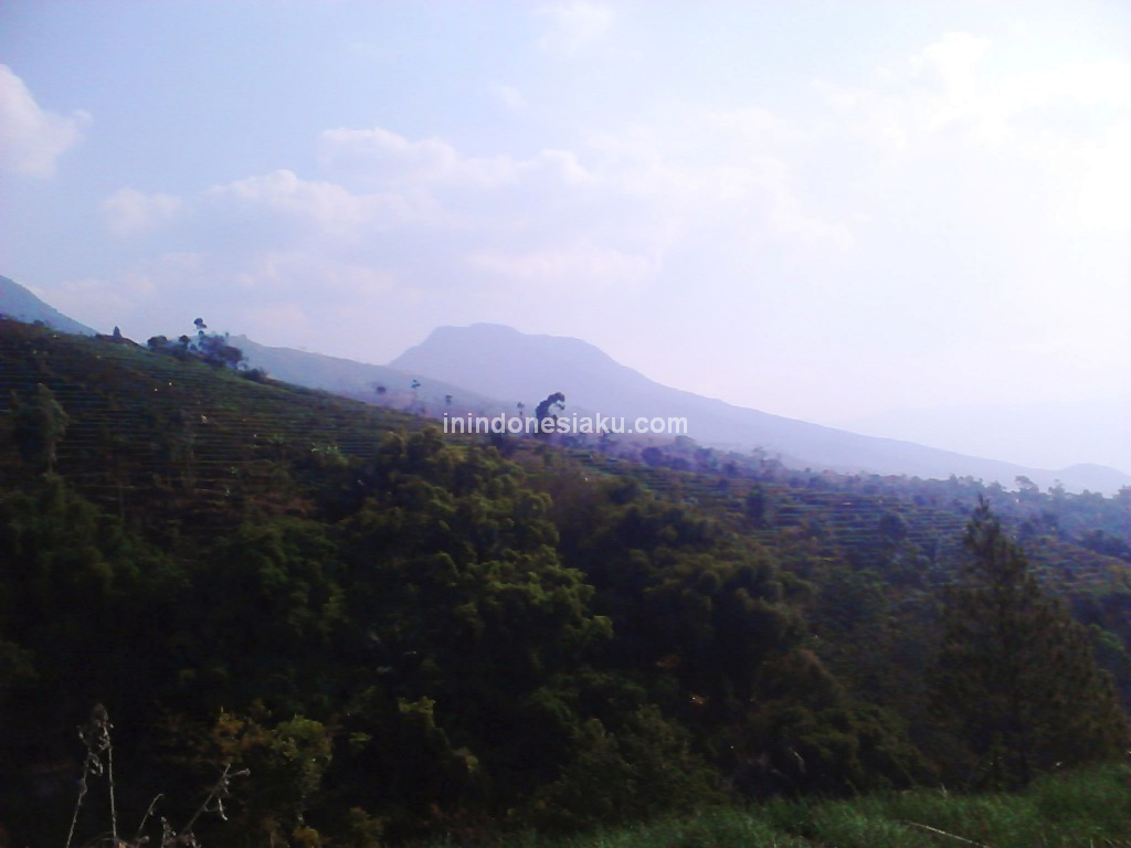 Kamojang Hill Bridge 3